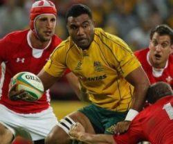 Australia vs British and Irish Lions Preview